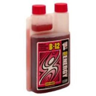 1st Step Pro-Wellness Liquid B-12 Energy, 16 Fluid Ounces