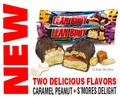 Labrada Lean Body Gold Bar, 12 Bars