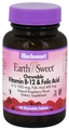 Bluebonnet Nutrition EarthSweet® Chewables Vitamin B12 & Folic Acid Tablets, 90 Chewables